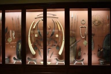 Part of collection of Giovanni Miani at the Museo di Storia Naturale. Photo by Zoe Cormack.